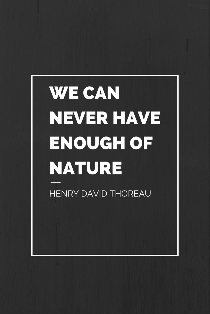 We can never have enough of nature Henry David Thoreau